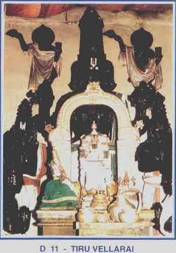 Thiruvellarai